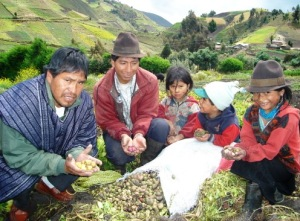 Ecuadorian family with harvest